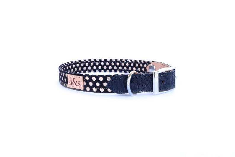 Dog Collar  Black and Gold Confetti   Martingale or Buckle image 0