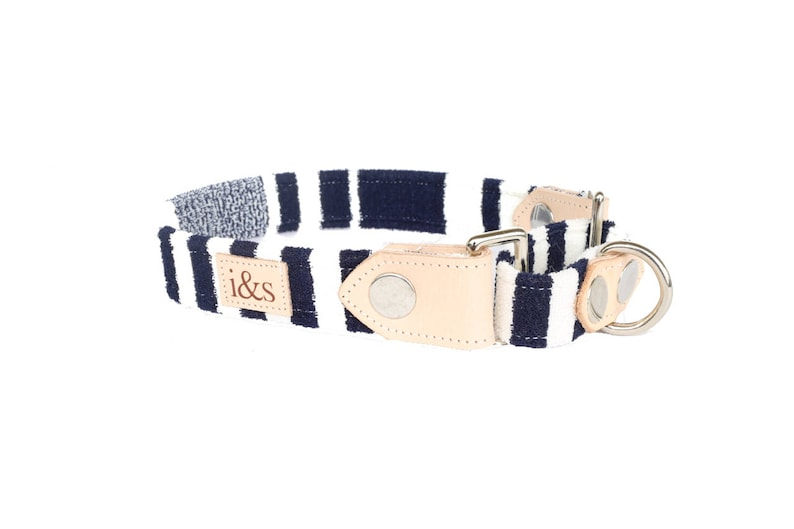 Dog Collar  Martingale  The Beverly Hills Martingale image 0
