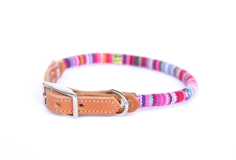 Cat Collar or Small Dog Collar  Pink Stripe image 0