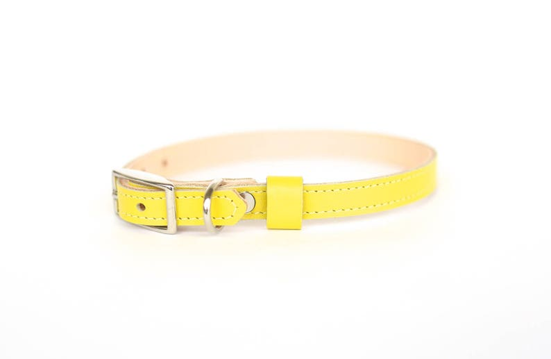 Cat or Small Dog Collar // Electric Yellow // Optional ID Tag image 0