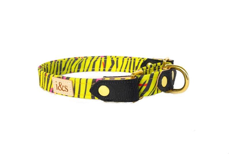 Dog Collar  Martingale  The Biggie image 0