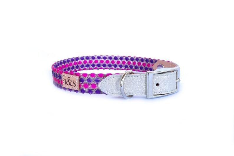 Dog Collar  Purple Confetti   Martingale or Buckle Style image 0