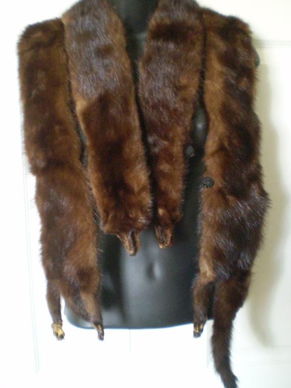 descuento en venta 100% de alta calidad precio Abrigo de visón vintage años 1940 estola piel abrigo de Mink 4 completo  cuerpos marrón Chocolate