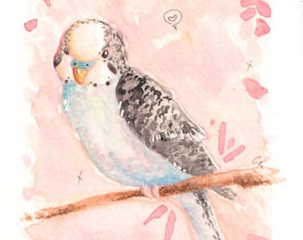 "Budgerigar 4"" x 6"" Original Painting"