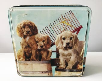 REDUCED Kitsch Vintage 1950s Burtons Biscuits Country Cousins Spaniel Dog Tin