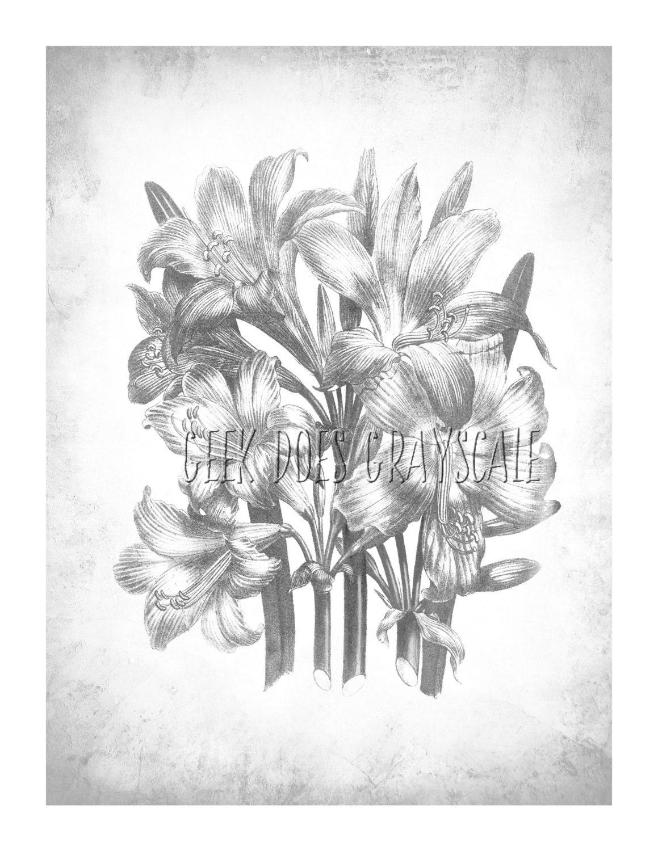 Flores en escala de grises escala de grises para colorear   Etsy