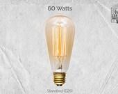 60 Watt Incandescent Edison Bulb