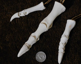 Articulated Emu Toe Bones