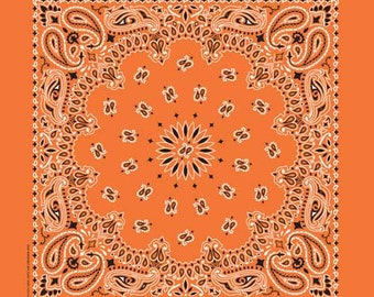 High Visibility Paisley Traditional 22in Bandanna / Face Cover (4 Colors)