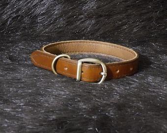 Medium 1in Leather Dog Collar (13-17in)