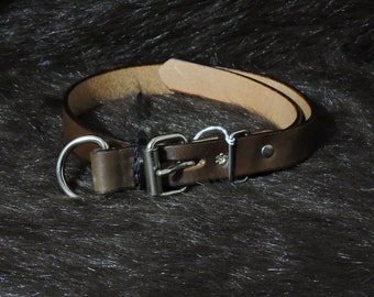 Large 1in Leather Dog Collar (17-25in)