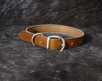 Small 1in Leather Dog Collar (9-13in)