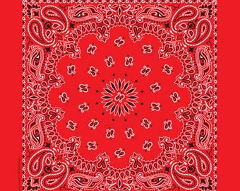 Traditional Paisley 22in Bandanna / Face Cover  (8 Colors)