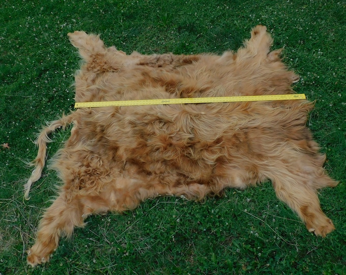 Featured listing image: Scottish Highland Cow Hide