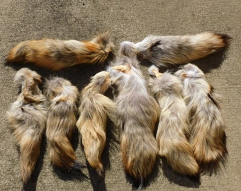 Natural Coyote Tail