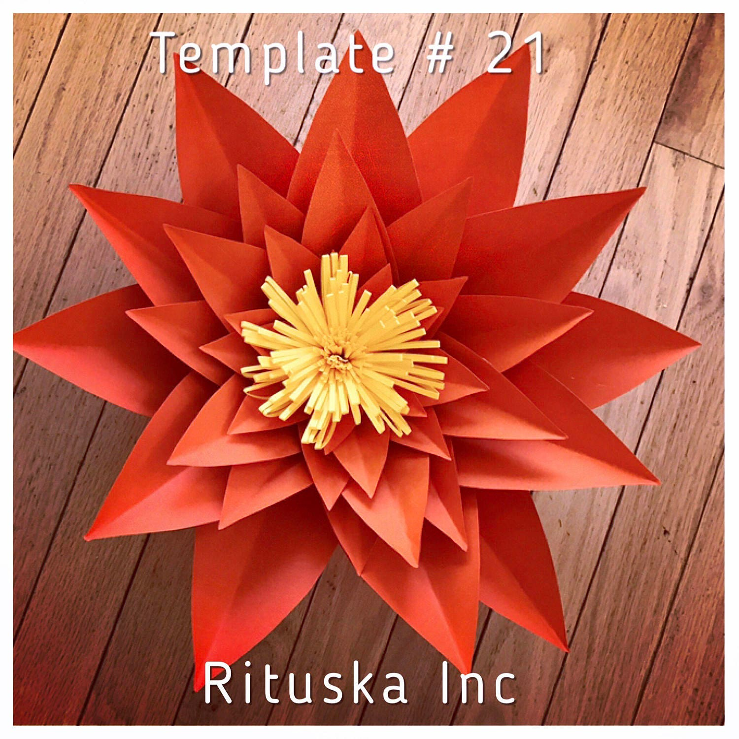 Large Paper Flower Template 21 Do It Yourself Diy Precut Etsy