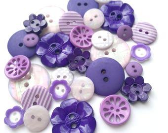 Lavender Flower Garden Collection [B0763B]