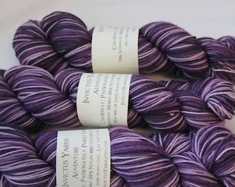 Purple Stripes Self Striping AdventureSock Yarn