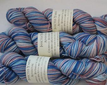 Sentimental Stripes Self Striping AdventureSock Yarn