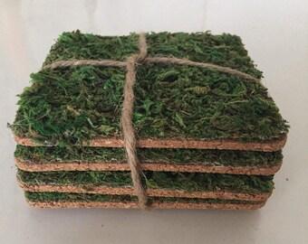 Moss Coasters