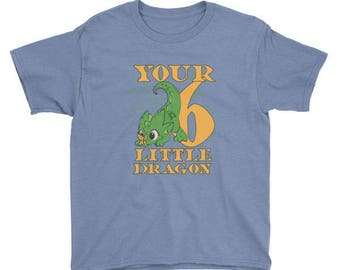 Six year old your little dragon birthday boy and girl t-shirt