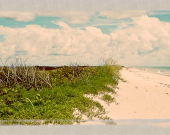 Seascape, Playalinda Beach, Florida Panoramic - Fine Art Photograph Print Picture