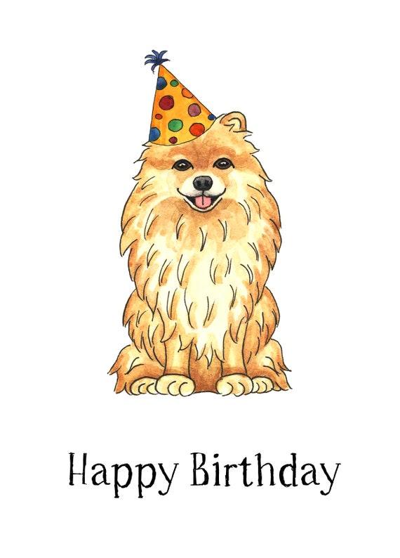 Pomeranian Happy Birthday Card Etsy
