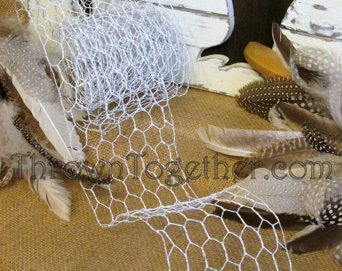 "Chicken Wire Ribbon 4in X 9ft Small Link 1/2"" White Chicken Wire Craft Ribbon"