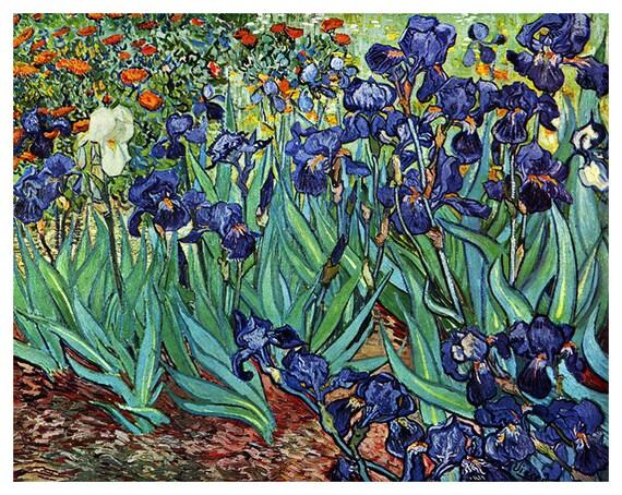 ART POSTER Irises Vincent Van Gogh