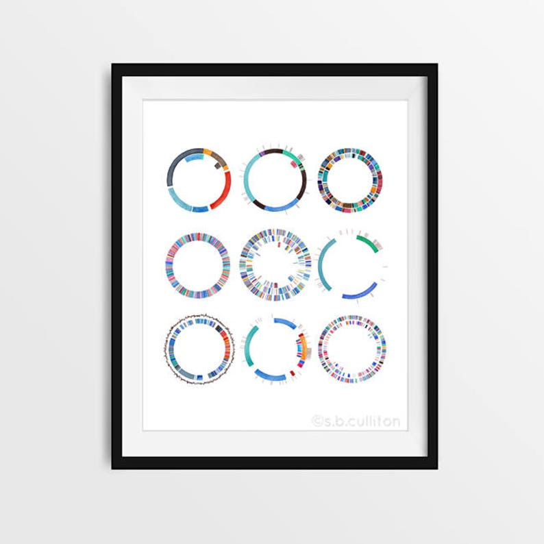Plasmid Collection DNA Science art watercolor print image 0