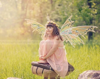 SYLPH WINGS Iridescent Fairy wings