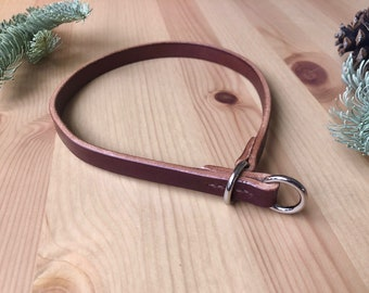 Bridle Leather Slip Dog Collar - Hand-Stitched Show Collar