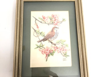 Vintage Chuck Ripper 3D framed Bird