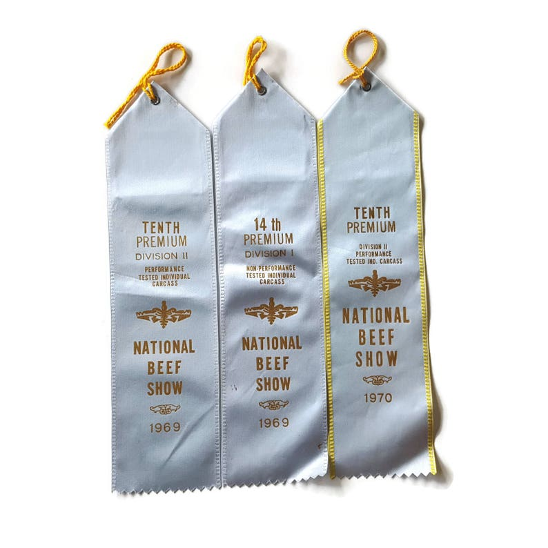 Vintage Blue Ribbons Beef National Show Angus Tenth Place Fair Rock Island Illinois Award Boy Baby Shower Beef Cake Burlesque Craft Satin