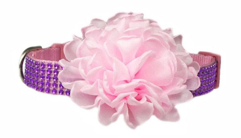Ruffled 4 Chiffon Flower Dog Collar Accessory