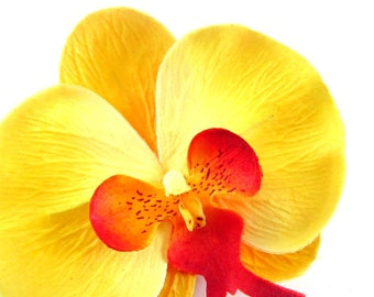 """10x Large Yellow Butterfly Orchids Heads 3.75"""" - Fabric - Phalaenopsis / Artificial Flower / Silk Flower - Wedding Decoration"""