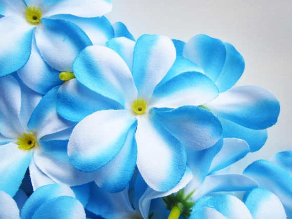 12 blue plumeria frangipani heads artificial silk flower 3 etsy image 0 mightylinksfo