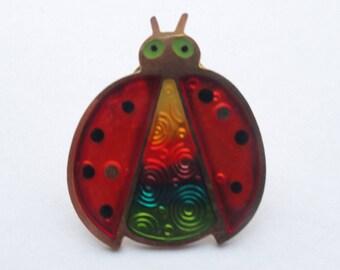 Vintage Rainbow Ladybug Pin