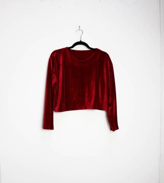 Red Velvet Crop Top Vintage Patterned Velvet Crop