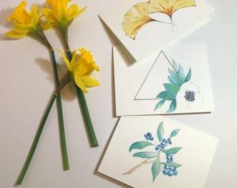 Botanicals - Packs