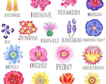 Floral Alphabet Poster