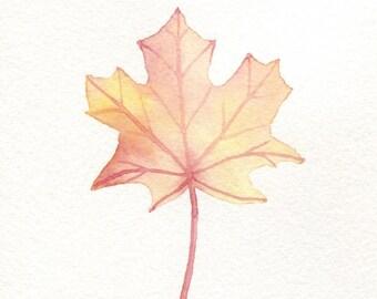 Autumn Maple Leaf Card