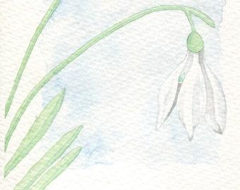 Snowdrop Card