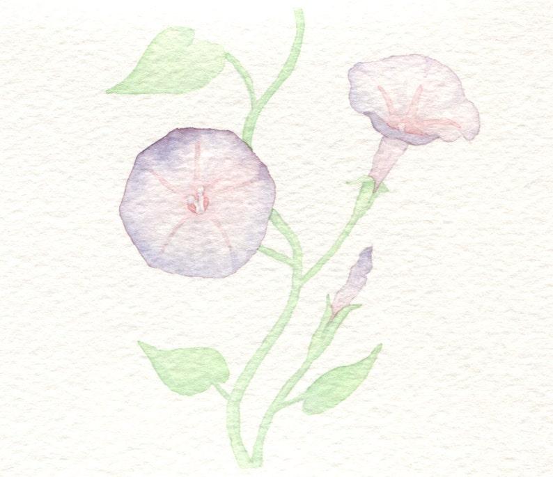 Morning Glory Card image 0