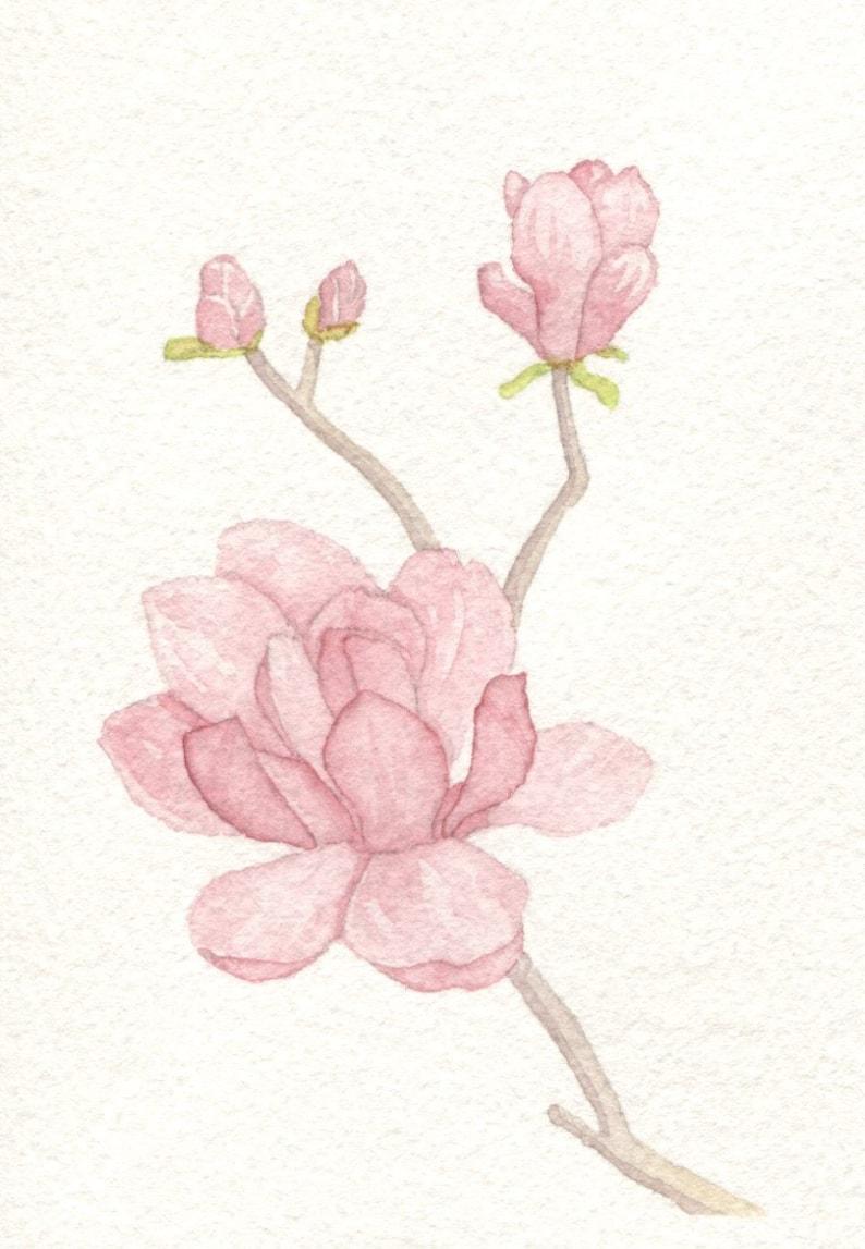 Pink Magnolia Card image 0