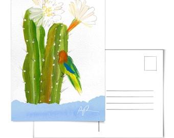 Lovebird Art.Lovebird Painting.Bird Postcard.Cactus Postcard.Cacti Postcard.Floral Postcard.Desert Postcard.Arizona Postcard.Lovebird art