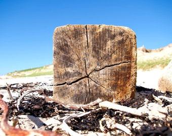 Driftwood, Beach, Sand, Blue Sky, Connemara, Atlantic Ocean, Limited Art Edition Photo,