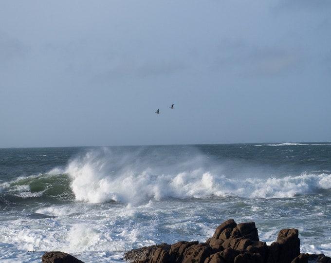 Canada Geese in Storm, Atlantic Ocean, Connemara, Limited Edition