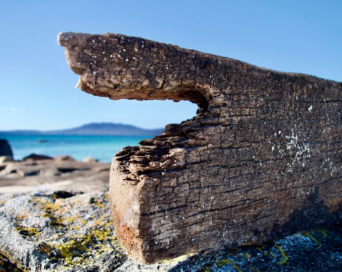 Driftwood 4, Roundstone, Connemara, Atlantic Ocean, Blue Sky and Sea, Yellow Lichen, Limited Edition Photo