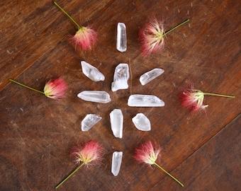Lemurian Crystal Point Rough Natural Lemurian Seed Crystal Metaphysical Supply Lemuria Stones Healing Crystals Gemstone Healing Meditation